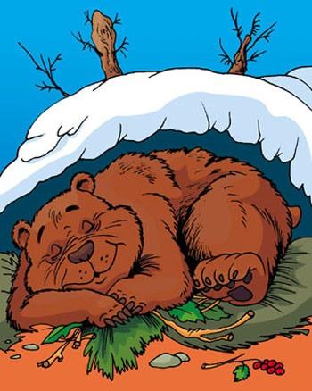 Страшний сон ведмедя