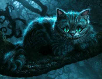 Чеширський кіт