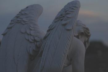 .крила