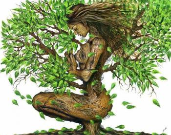 Одного дерева коріння