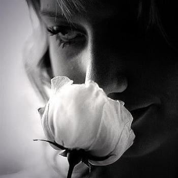 Цілунок квітки