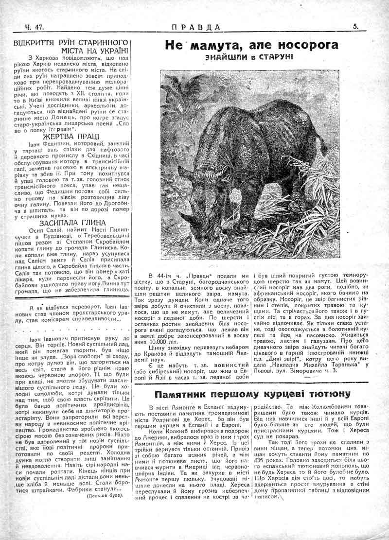 Не мамута, але носорога знайшли в Старуні. Памятник першому курцеві тютюну.