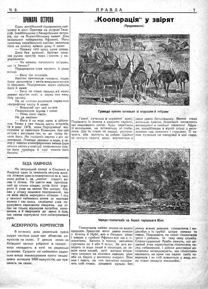 Січень 1930: Кооперація у звірят. Асекурують комуністів.
