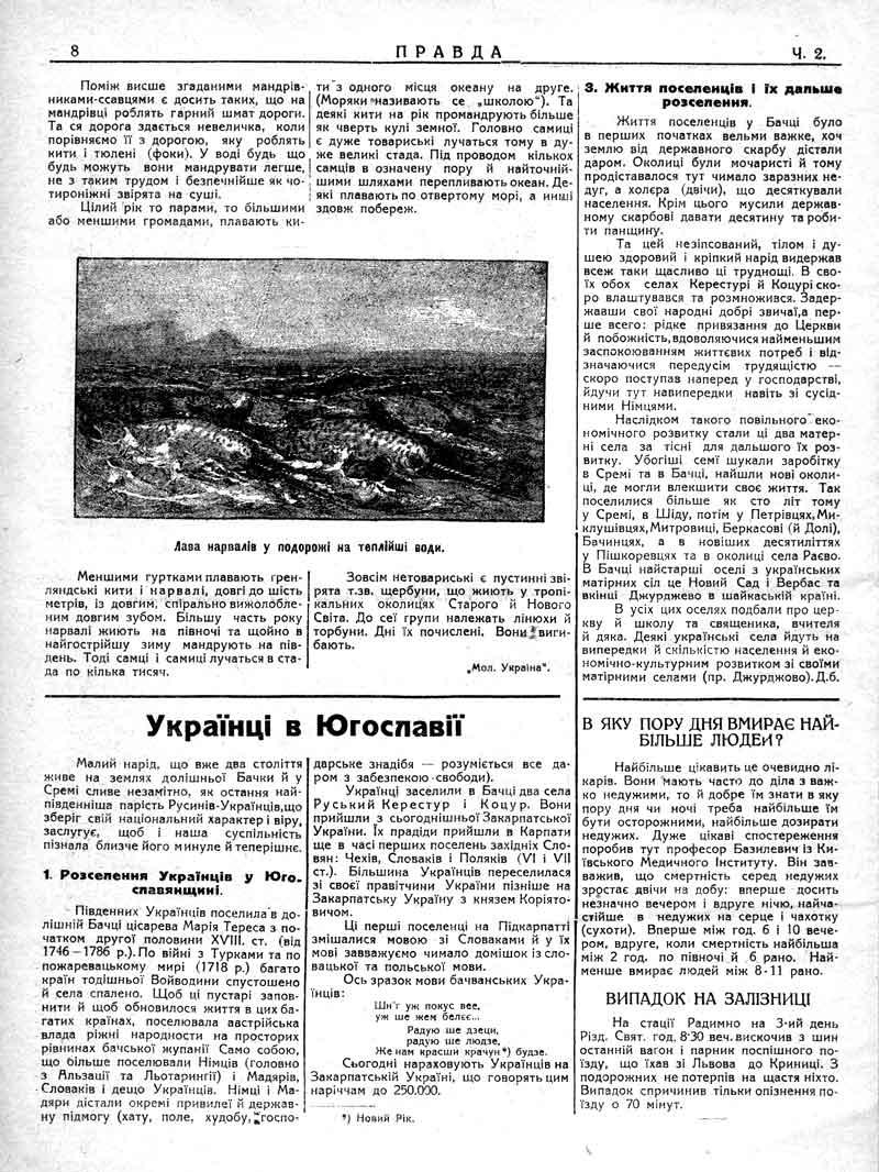 Січень 1930: Українці в Югославії. В яку пору дня вмирає найбільше людей?