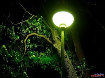 Світло ліхтаря