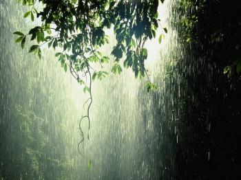 А дощ пройшов!!!