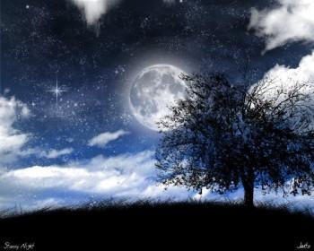 Місячний сонет