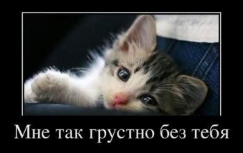 - Експромт -