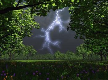 Горгоняча лісова гроза