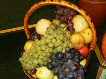 Яблуками, грушами літо опадає