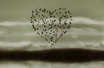 Без кохання