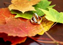 Осінь жовтим листом землю засипає