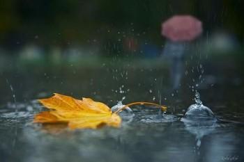 чи йде дощ