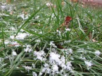 І падав сніг
