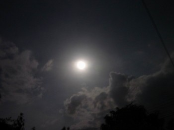 Осіння ніч…