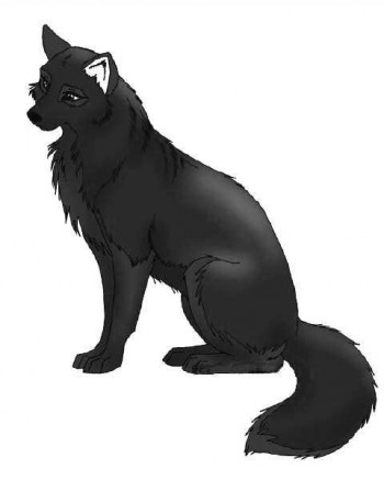Загадка – вовк