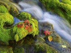 Мовби річка невеличка