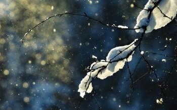 Весняний снігопад