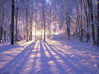 Зима в березні