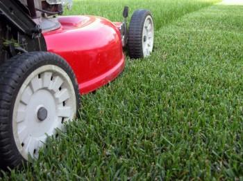 Основные технические характеристики газонокосилок