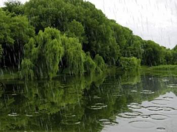 Вранішня злива