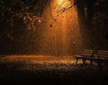 Пісні нічного дощу