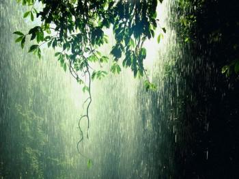 Стіна дощу