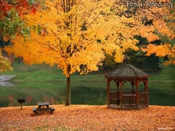 Осінь у альтанці