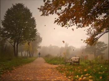 Дороги жовтневої туман