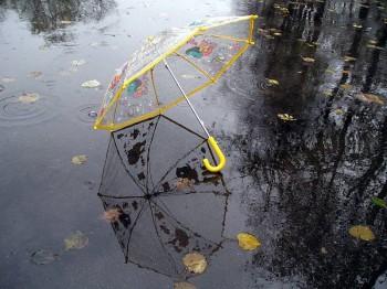 Світанок чарує осіннім дощем