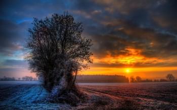 Сном зима вечорова...