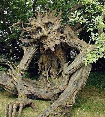 Чудо-деревій