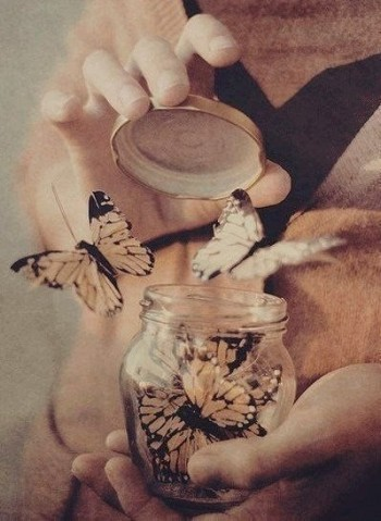 Чому б не звільнити метеликів?