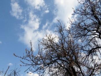 Ласкаве небо сповнене весною
