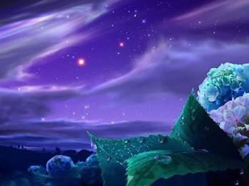Сад зоряних мрій
