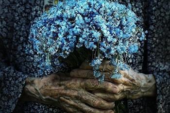 Незабудки - квіти кохання