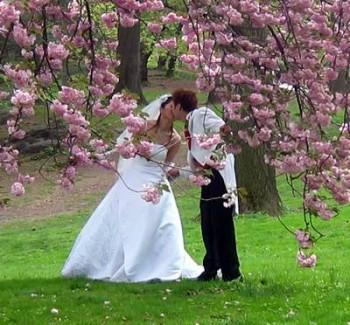 Немного о выборе свадебного платья.