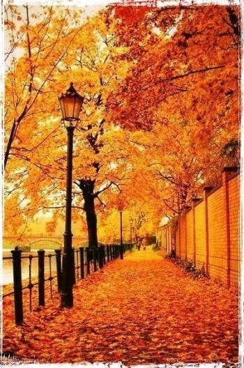 Опадає листя…