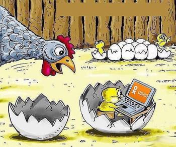 Яйця курей учать