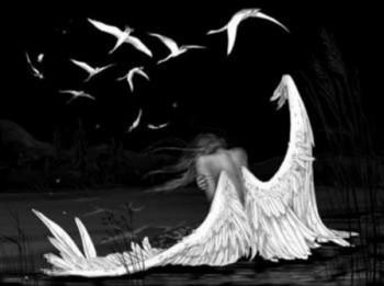 Чи відростають обпалені крила?