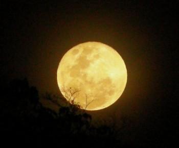 Мовчазними прощаннями скривлена місячна твердь