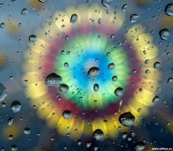 Зворотний бік дощу