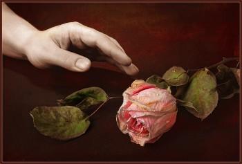 Життя-квітка