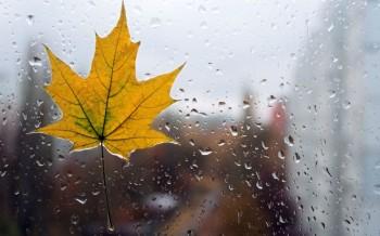 Звична осінь