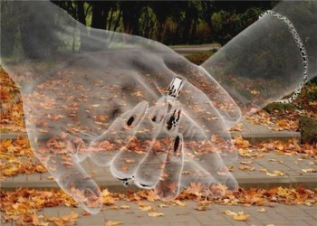 Чар-осені листопад