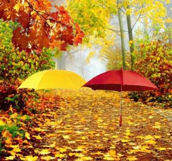 Ода парасолям
