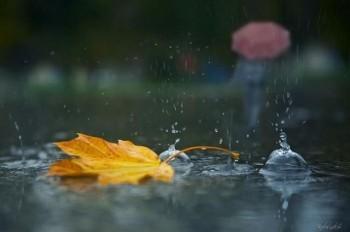 Мінорна осінь
