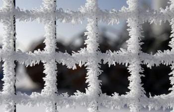 Полон зими