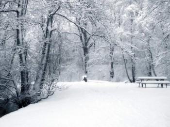 І тихо падав перший сніг