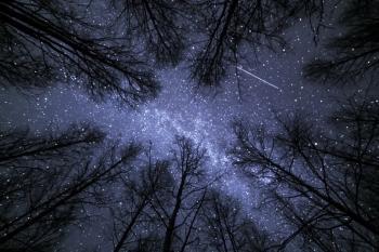 Ноктюрн у зоряних дощах